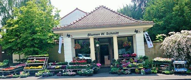 Ein Bild von Blumen W. Schmitt e.K. Anita Kriesfelder